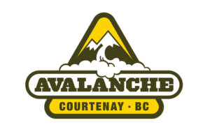 Avalanche logo and branding portfolio