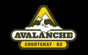 Avalanche logo and branding portfolio